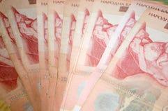 Serbiska dinarpengar, sedlar av 1.000 dinar Royaltyfri Fotografi