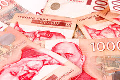 Serbiska pengar Arkivfoto