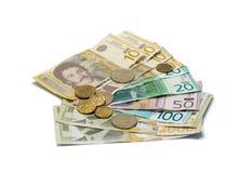 Serbska pieniądze sterta banknoty różna wartość w Serbskich dinarach z różnymi monetami w Serbskich dinarach na biały b obrazy stock