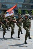 Serbska wojsko flaga jednostka Obrazy Royalty Free