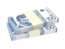 Serbski dinar odizolowywający na białym tle Obraz Stock