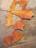 Serca ciący od liścia klonowego Zdjęcia Stock