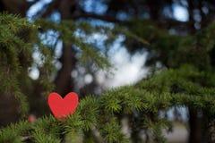 Serca i walentynka dnia dekoracja w parku. Plenerowi składy. Zdjęcie Royalty Free