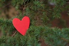 Serca i walentynka dnia dekoracja w parku. Plenerowi składy. Zdjęcia Stock