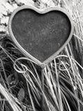 serca kształtny placeholder Zdjęcie Royalty Free