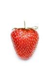 serca kształtny strawberrry Zdjęcie Stock