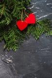 Serca na walentynki ` s dniu na jodły i betonu tle z przestrzenią i opróżniają miejsce Fotografia Stock