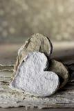 serca osamotneni Zdjęcie Stock