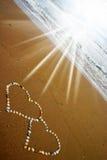 serca seashell Zdjęcia Royalty Free