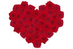 serce 2 rose Zdjęcia Stock