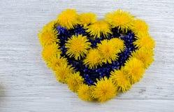 serce ' Błękit i kolor żółty kwitniemy na stole w shap Obraz Stock