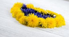 serce ' Błękit i kolor żółty kwitniemy na stole w shap Zdjęcia Royalty Free
