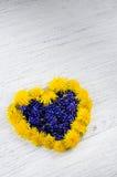 serce ' Błękit i kolor żółty kwitniemy na stole w shap Fotografia Stock