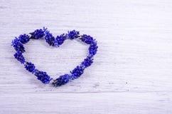 serce ' Błękit kwitnie na stole w formie słuchającego Obraz Stock