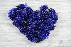 serce ' Błękit kwitnie na stole w formie słuchającego Zdjęcie Stock