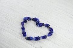 serce ' Błękit kwitnie na stole w formie słuchającego Fotografia Stock