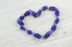 serce ' Błękit kwitnie na stole w formie słuchającego Obrazy Royalty Free