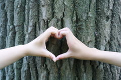 Serce kształtować ręki Zdjęcia Stock