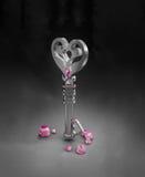 Serce kształtujący klucz Zdjęcie Royalty Free