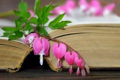 Serce kształtujący kwiat na książce Zdjęcia Stock