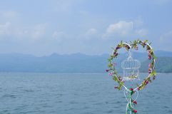 Serce kształtujący kwitnie kochanka niebo zdjęcie royalty free