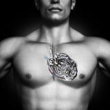 serce mechaniczne Zdrowy ludzki kierowy pojęcie Fotografia Stock