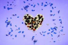 Serce od wysuszonych kwiatów, menchia Obrazy Royalty Free