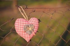 serce odizolowane kształtu white pomidorowego Zdjęcie Royalty Free