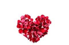 Serce Różani płatki Fotografia Stock