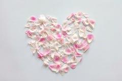 serce różowi róża płatki Obrazy Royalty Free