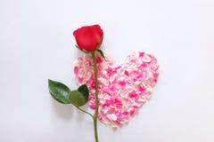 serce różowi róża płatki Obraz Royalty Free