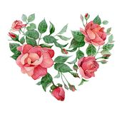 Serce róże Fotografia Royalty Free
