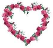 Serce róże Zdjęcia Royalty Free
