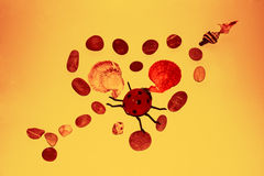 Serce skały z miłości pluskwą wewnątrz Zdjęcie Stock