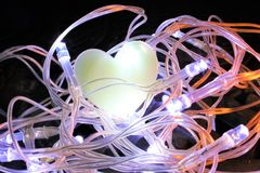Serce w gniazdeczku Czarodziejscy światła Zdjęcia Stock