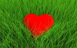 Serce w trawie Obrazy Royalty Free