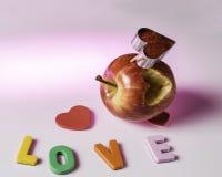 Serce wydobujący od jabłka dla valentines dnia Zdjęcia Royalty Free