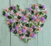 Sercowaci kwiaty Obrazy Stock