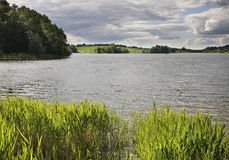 Serdovo lake.  Summer. landscape. Belarus Royalty Free Stock Photo