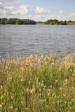 Serdovo lake.  Summer. landscape. Belarus Stock Photography