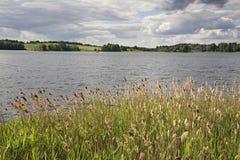Serdovo lake.  Summer. landscape. Belarus Stock Photos
