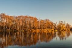Serebryany Bor in Moscow. Autumn landscape Royalty Free Stock Photos