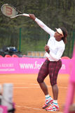 Serena Williams Stockbild