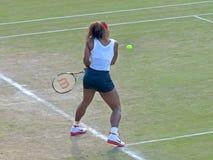Serena Williams Lizenzfreies Stockfoto