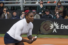 Serena williams brindisi fed cup 2015 Stock Image