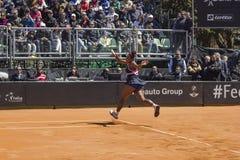 Serena williams brindisi fed cup 2015 Stock Image