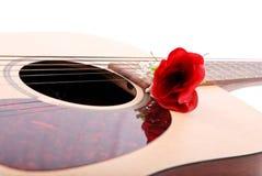 Serenade Royalty Free Stock Photography