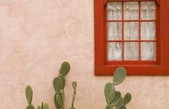 Serenade del cactus Fotografia Stock Libera da Diritti