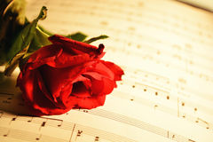 Serenade Royalty Free Stock Image