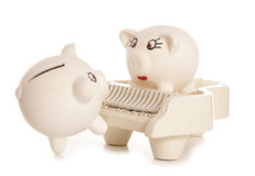 Serenading the mrs piggy bank Royalty Free Stock Photography